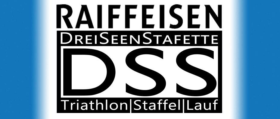 logo_dss_neu8.jpg