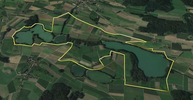 Streckenplan der Laufstrecke Viertelmarathon.jpg